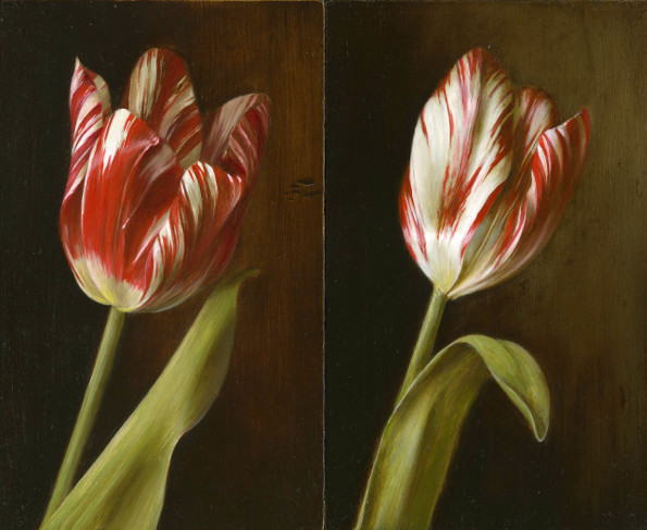 Two Zilver Standaard heritage tulips (1760). Oil on wood, 11x18cm each