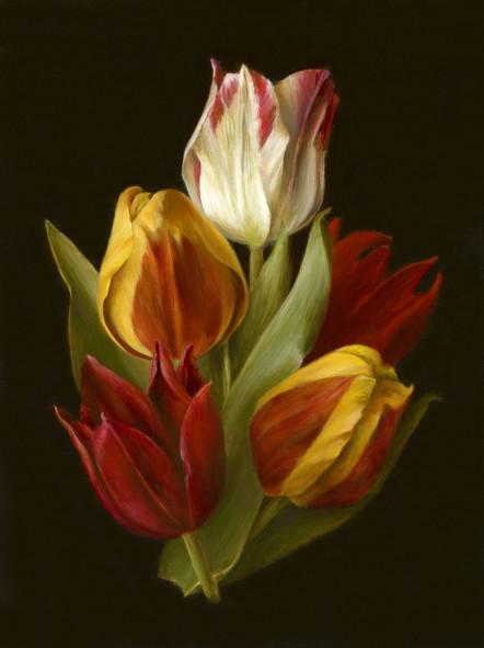 Still life: Dutch heritage tulips by Tanja Moderscheim