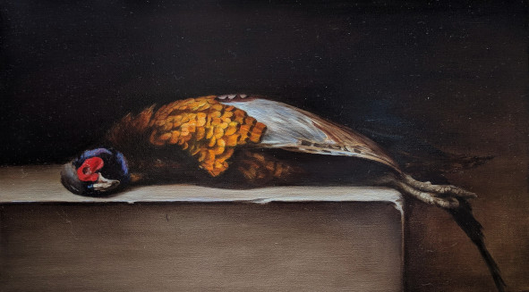 "Gold pheasant. Oil on fine linen, 22.9x40.6cm (9x16"")"