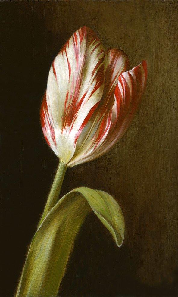 Tulip painting: Zilver Standaard (1760). Oil on wood, 11x18cm